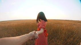 Follow-me hübsches Porträt Brunettemädchen geht mit einem Mann durch die Hand auf Romanze Liebeslebensstil des Naturfeldes Langsa stock video