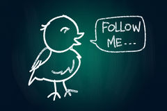 Follow Me. Said a Bird, Social Media Concept drawn with Chalk on Blackboard Stock Images