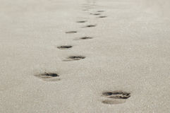 Follow in my Footsteps Royalty Free Stock Photography