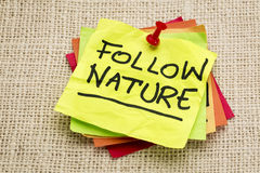 Follow nature Royalty Free Stock Photography