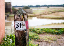 Follow the right path in the nature Royalty Free Stock Photos