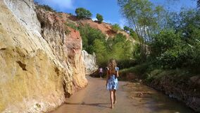 Girl Walks along Fairy Stream between Rocks Plants. Follow shot blond long haired woman walks along Fairy stream between high cliffs and tropical plants on nice stock footage