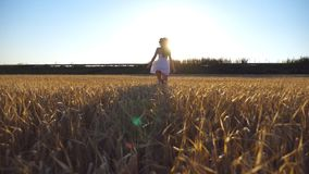 Follow to young girl running along the field with sun flare at background. Woman in dress jogging at the meadow and. Enjoying freedom. Rear back view Slow stock video footage