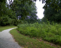 Follow the Trail Stock Photo