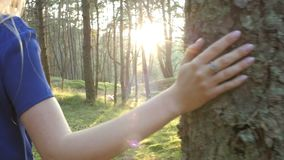 Follow the women`s hand. She runs through the trees in a slow action stock video