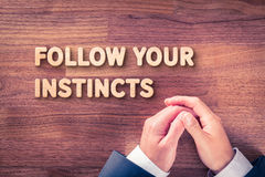 Follow your business instincts Royalty Free Stock Image