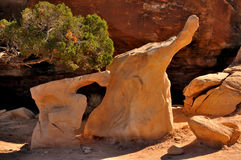 Follower. Two human like rocks follow each other in Canyonlands National Park Stock Photography