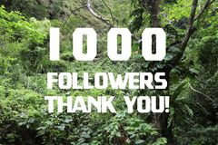1000 followers thank you royalty free stock photography