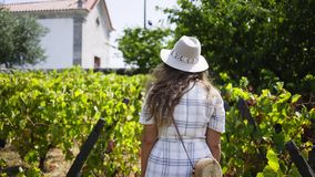 Following girl walking on vineyard stock video