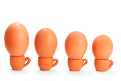 Following the leader. Group of four organic eggs in handmade terracotta coups arranged in row by size, isolated on white Royalty Free Stock Image