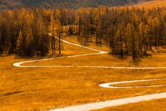 A quiet path in Kanas stock photo