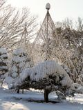 Bonsai tree with support ropes in Tokyo park covered in snow. royalty free stock image