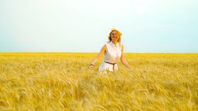 Following shot of happy young woman running on golden wheat field on sunny day. Following shot of happy young red haired woman running on golden wheat field on stock footage