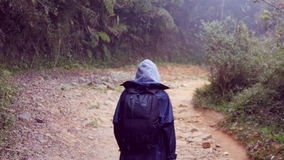 Following to tourist girl with backpack that walking along tropical forest. Hiking woman in raincoat going in wet wood stock video