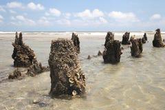 Folly Beach Pier. Broken Pier at Folly Beach Stock Photo