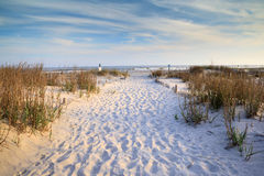 Folly Beach, South Carolina. Sandy path of footprints between the dunes and sea oats toward the Atlantic Ocean at Folly Beach near Charleston, South Carolina royalty free stock photo