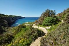 Fomm ir-rih - Malta. Fomm ir-rih Bay and Cliffs- Malta Royalty Free Stock Photo