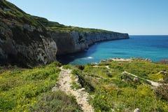 Fomm ir-rih - Malta. Fomm ir-rih Bay and Cliffs- Malta Stock Images