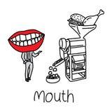 Fonction de métaphore de la cavité de bouche à faciliter l'ingestion et les Di Image stock