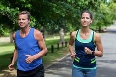 Fonctionnement d'athlètes de marathon Images stock