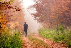 Fonctionnement dans la forêt brumeuse d'automne photos libres de droits