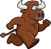 Fonctionnement de Buffalo Photos stock
