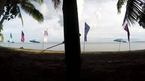 Fonctionnement de jeune femme en tant que décapant de plage ratissant les portées, débris sur la plage sablonneuse tropicale banque de vidéos