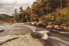 Fonctionnement de rivière parmi les rivages pierreux en parc d'état d'entaille de Franconia de forêt LES Etats-Unis New Hampshire photo libre de droits
