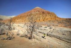 Fonctionnement de traînée dans le désert photos stock