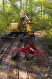 Fonctionner dans la forêt Image stock