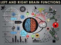 Fonctions gauches et droites de cerveau Photos libres de droits