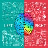 Fonctions gauches et droites de cerveau avec des griffonnages illustration libre de droits