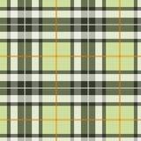Fond écossais Photo libre de droits
