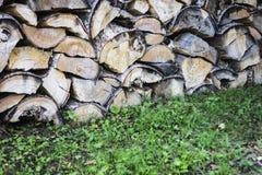 Fond élevé de bois de chauffage de texture Écorce contrastée d'arbre dedans Photo libre de droits