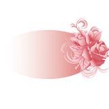 Fond 2 de roses Photo stock