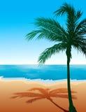 Fond 9 de plage Photographie stock libre de droits