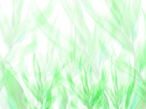 Fond abstrait avec les branches vertes Image libre de droits
