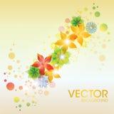 Fond abstrait coloré de vecteur de fleur Images libres de droits