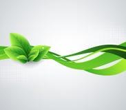 Fond abstrait d'écologie Image libre de droits