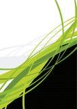 Fond abstrait d'herbe Photos libres de droits