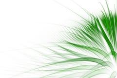 Fond abstrait d'herbe verte illustration libre de droits