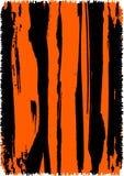 Fond abstrait d'impression de tigre Images libres de droits