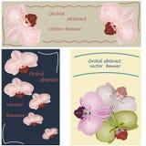 Fond abstrait d'orchidée Photo stock