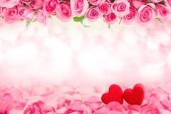 Fond abstrait de belle rose douce fraîche de rose et de h rouge Photographie stock