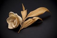 Fond abstrait de fleur Photo stock