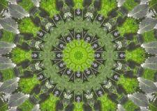 Fond abstrait de fractale - lames de vert Photos libres de droits