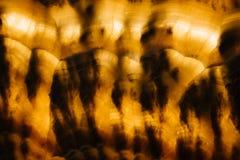 Fond abstrait de marbre de luxe rougeoyant lumineux de texture Photos libres de droits
