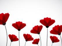 Fond abstrait de nature Fleurs rouges de pavot illustration de vecteur