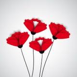 Fond abstrait de nature Fleurs rouges de pavot illustration libre de droits