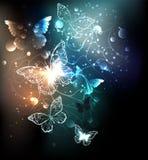 Fond abstrait de papillons lumineux de nuit Photo stock